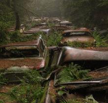 Mystérieux cimetière de voitures dans...
