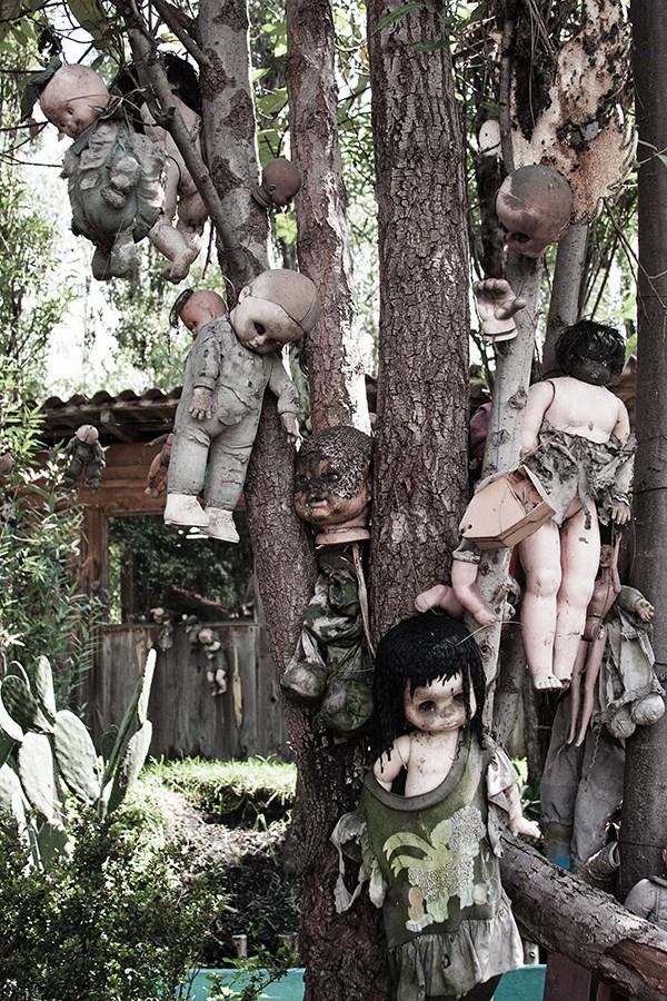 IsladelasMunecas nssr21 lileauxpoupees urbex halloween effrayant poupon arbre - L'Île des poupées, l'un des lieux abandonnés les plus effrayants au monde