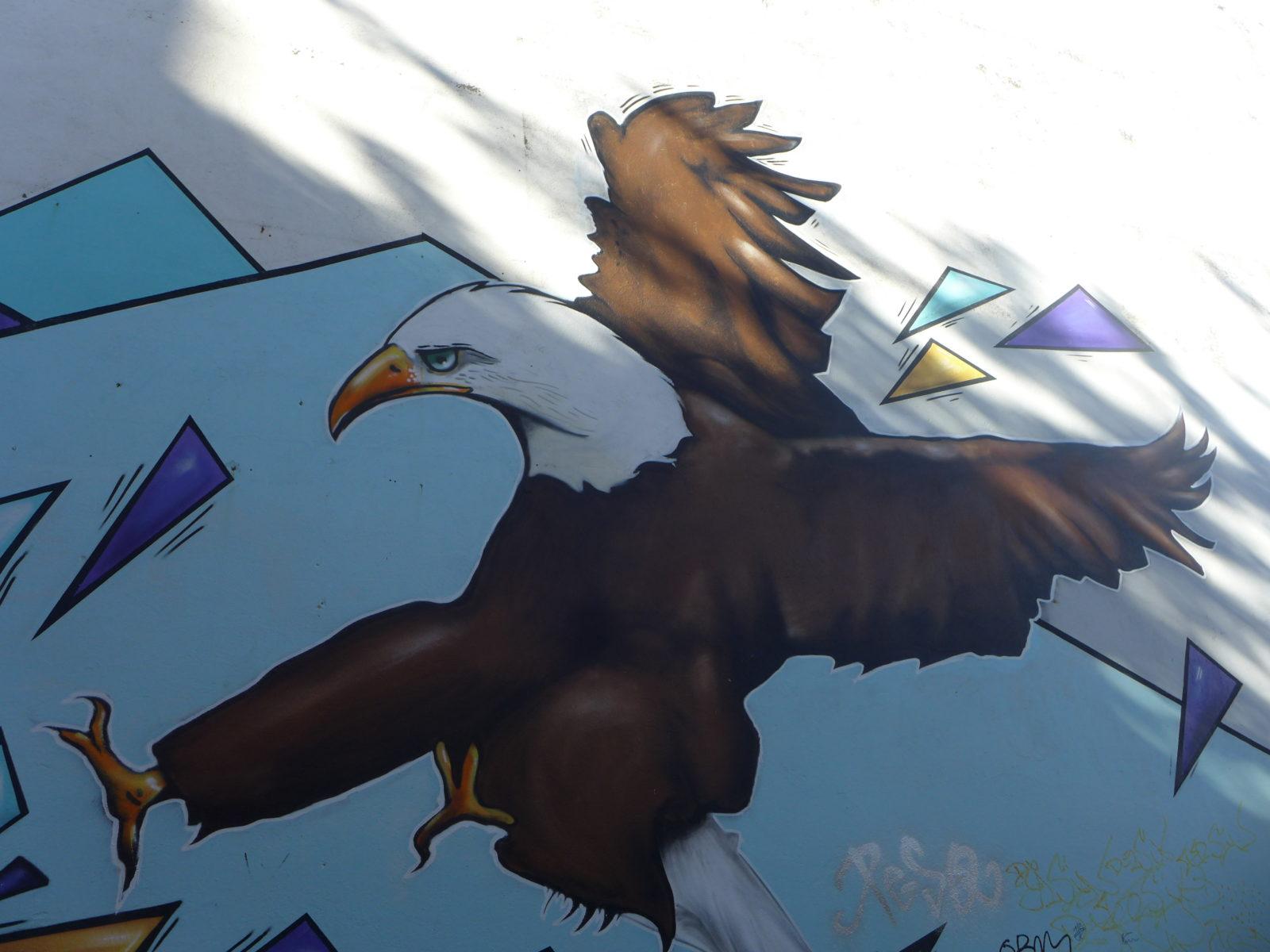 selur street art islande reykjavik aigle - Focus sur Reykjavik : la capitale de l'Islande s'ouvre au street art !