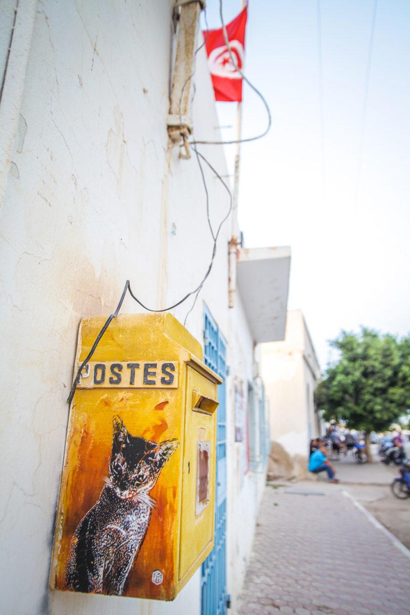 C215 fuel djerbahood tunisie street art galerie village fresque chat - Sur l'île de Djerba, un petit village tunisien porte haut les couleurs du street art