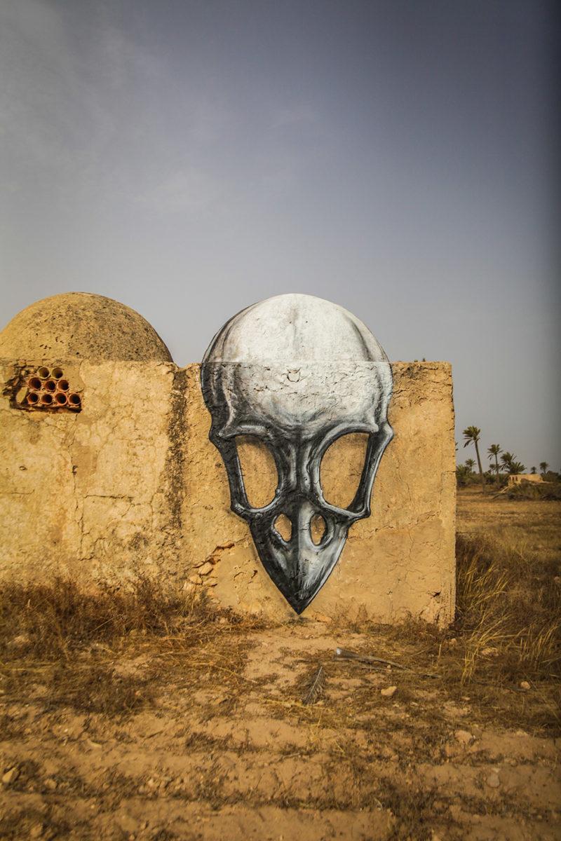 Roa djerbahood tunisie street art galerie village fresque crane - Sur l'île de Djerba, un petit village tunisien porte haut les couleurs du street art