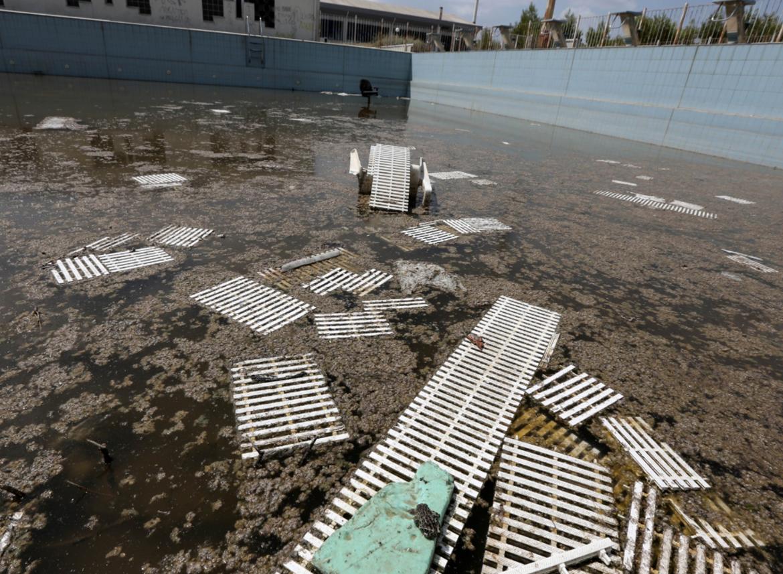 athenes piscine abandonne jeux olympiques - Berlin, Sarajevo, Athènes : les sites des Jeux Olympiques version urbex