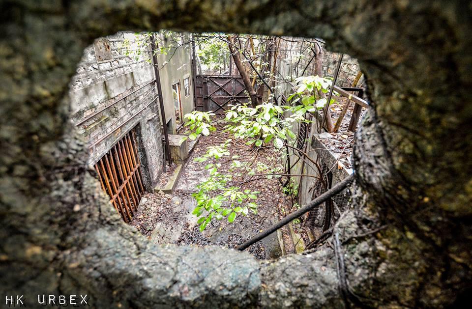 abattoir exploration hk urbex nature - Le collectif HK Urbex immortalise les lieux oubliés de Hong-Kong