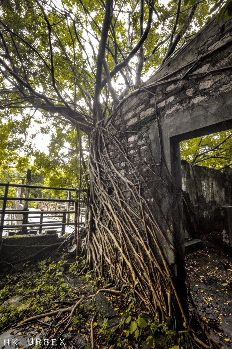 abattoir hk urbex collectif exploration - Le collectif HK Urbex immortalise les lieux oubliés de Hong-Kong