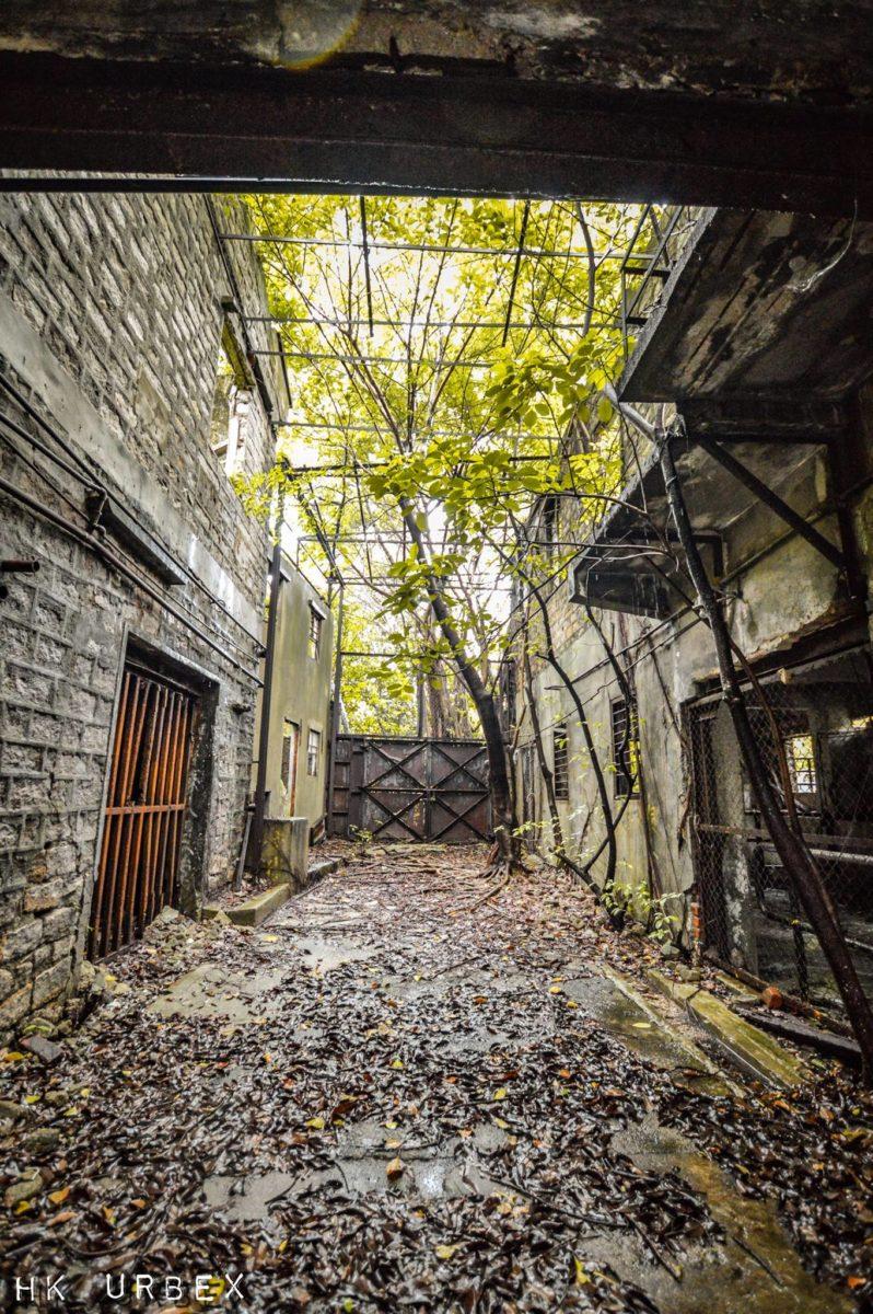 exploration urbaine hk urbex abattoir - Le collectif HK Urbex immortalise les lieux oubliés de Hong-Kong