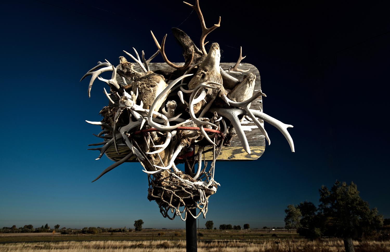 basket carcasses rob hammer - Le rêve américain à travers les paniers de basket immortalisés par Rob Hammer