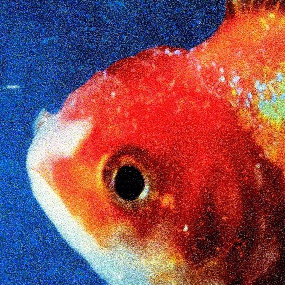 vince staple big fish - Vince Staples : des gangs de L.A. au rap pour les clubs