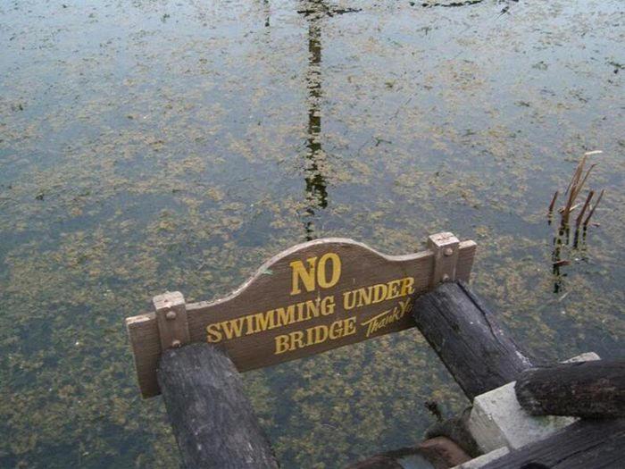 Disney Rivers Country 9urbex radar exploration piscine abandon fantome - Piscines olympiques et parcs aquatiques : les plus beaux spots abandonnés