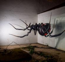 Odeith fait jaillir par anamorphose des insectes géants !