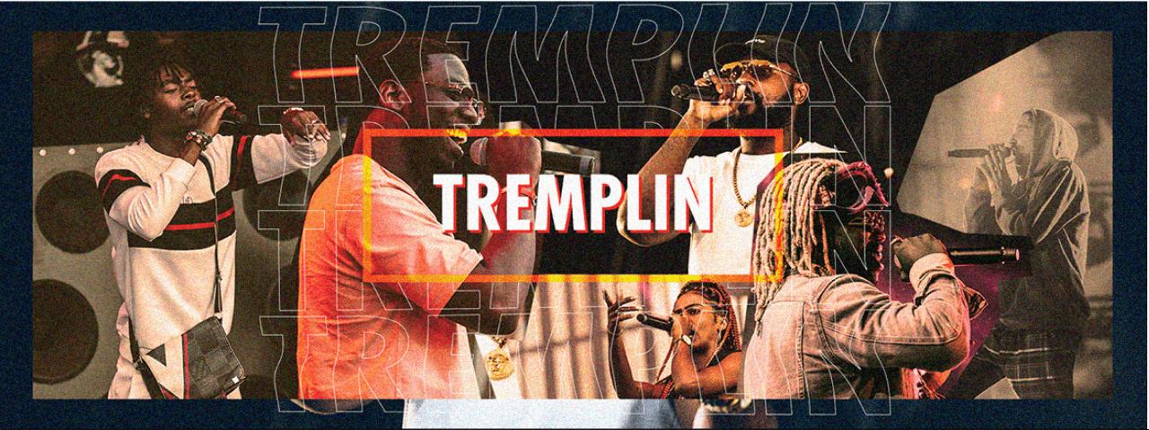 Covers Tremplin Presentation - Présentation