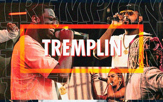 tremplin mobile 2 640x400 - Présentation